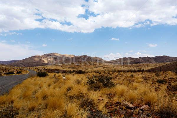 Panorama Namibia paisaje naturaleza fondo verano Foto stock © artush
