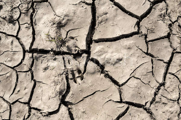Grunge çamur çatlaklar doku kuru kırık Stok fotoğraf © artush