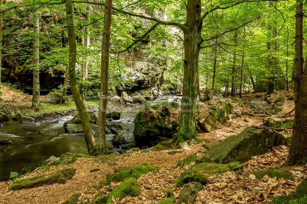 mountain creek doubrava  Stock photo © artush