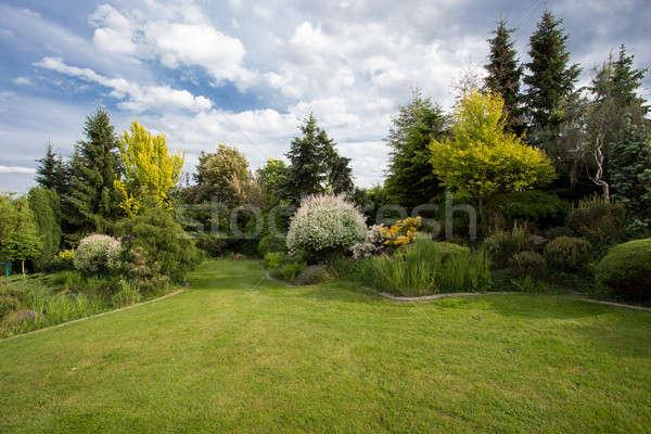 Beautiful spring garden design Stock photo © artush