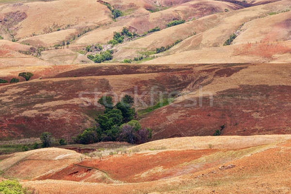 Stock photo: Traditional Madagascar hill landscape