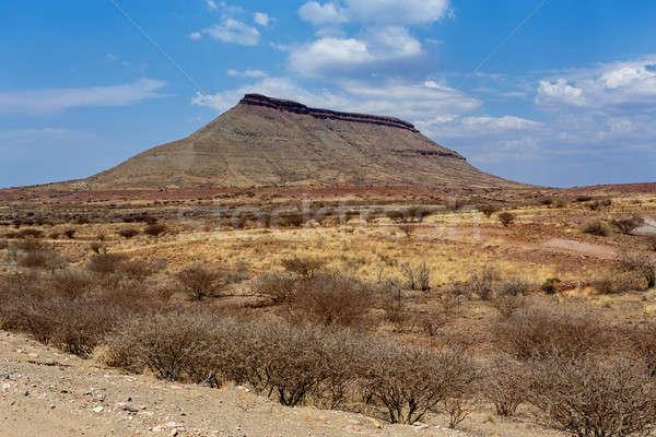 panorama of fantrastic Namibia landscape Stock photo © artush