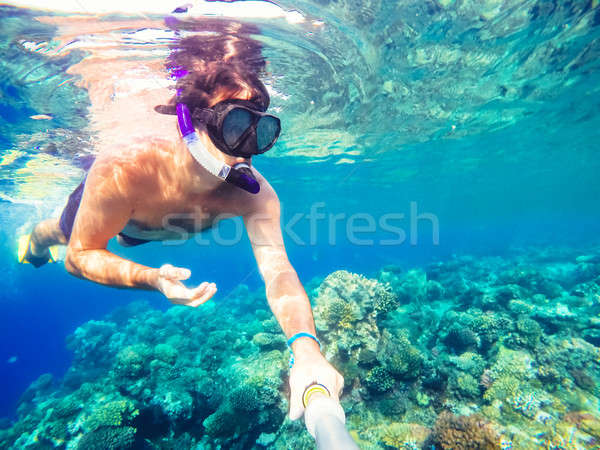 Snorkel swims in shallow water, Red Sea, Egypt Stock photo © artush