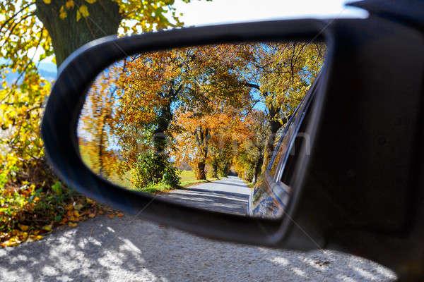 rural Road in the autumn Stock photo © artush