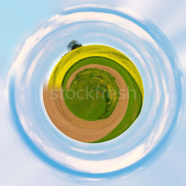 Little planet with green grass ecology concept Stock photo © artush