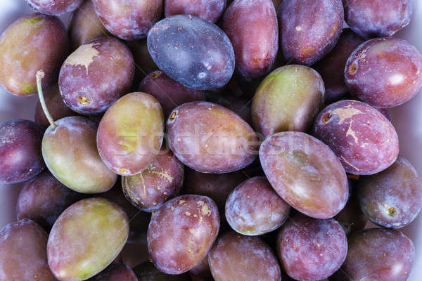 Acid purple and green Plums (Blackthorns) Stock photo © artush