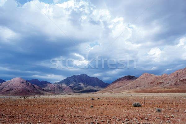 Панорама фантастический Намибия пейзаж природы фон Сток-фото © artush