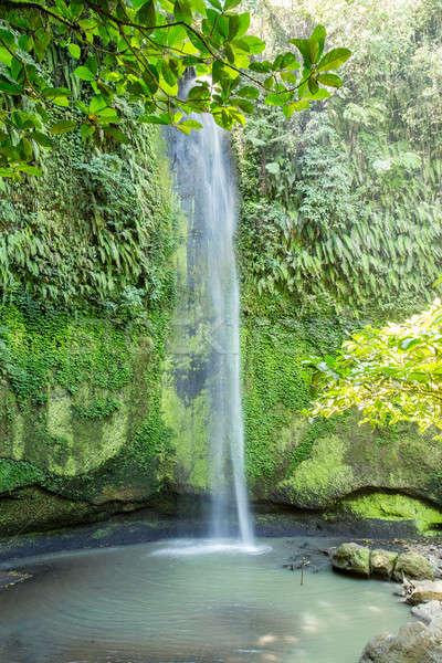 Cascada Indonesia pequeño agua forestales montana Foto stock © artush