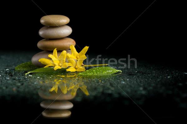 ストックフォト: バランス · 禅 · 石 · 黒 · 黄色の花