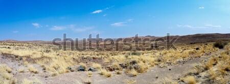 dry Namib desert in sunset, landscape Stock photo © artush