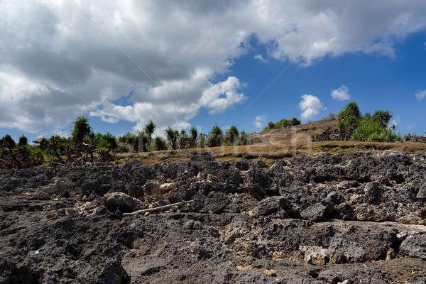 rocks on coastline at Nusa Penida island  Stock photo © artush