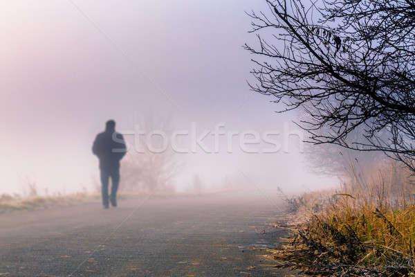 Stock fotó: Férfiak · sziluett · köd · személy · séta · ködös