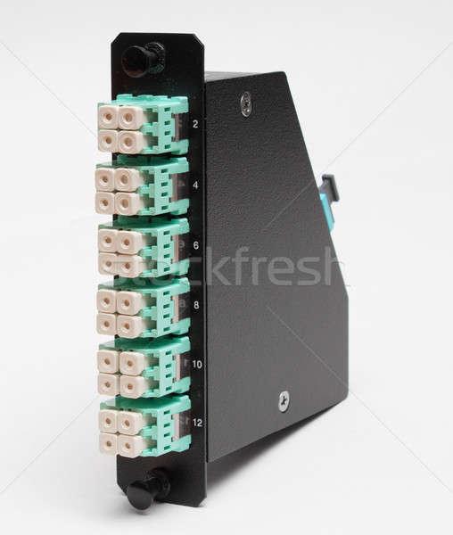Rost optikai kazetta zöld technológia hálózat Stock fotó © artush