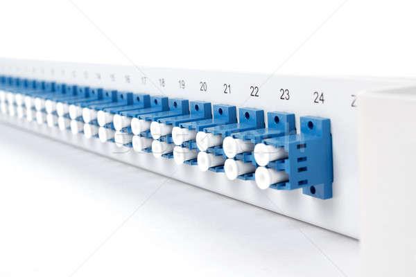 Fiber optic distribution frame with SC adapters Stock photo © artush