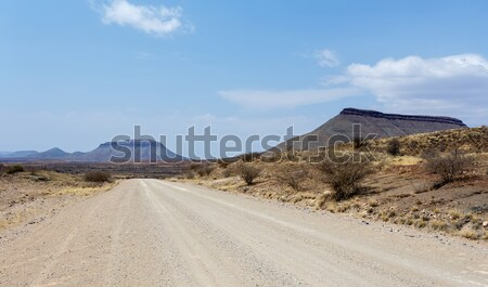 endless road in Namibia moonscape landscape Stock photo © artush