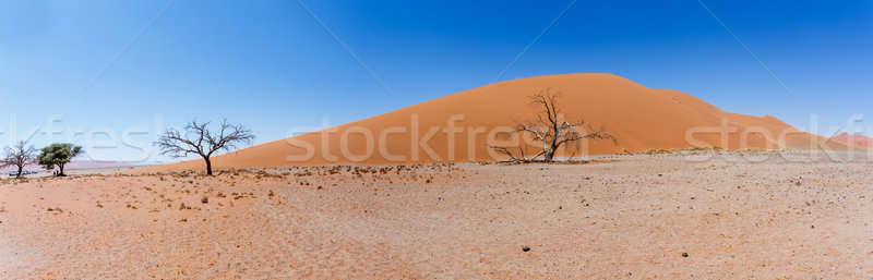 Geniş panorama kumul Namibya görmek üst Stok fotoğraf © artush