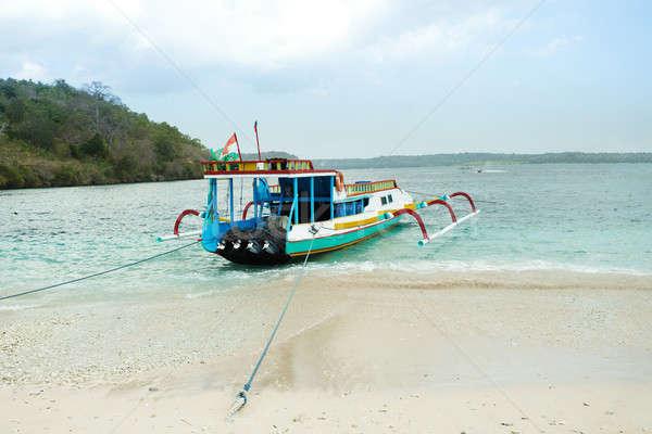 Catamarán playa bali Indonesia arenoso océano Foto stock © artush