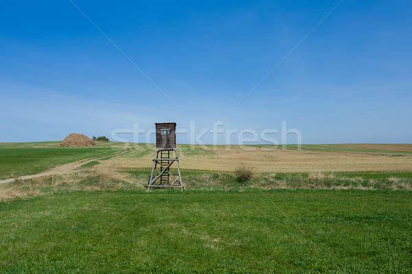 Wysoki siedziba polowanie wieża Zdjęcia stock © artush