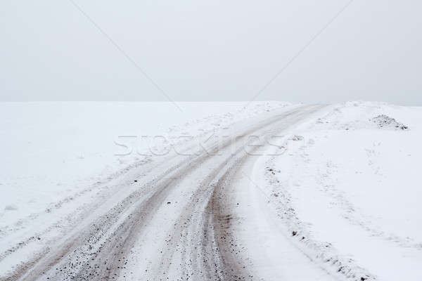 winter landscape with rural road Stock photo © artush