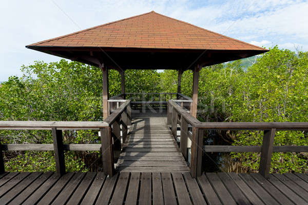 Stock photo: Indonesian landscape with walkway