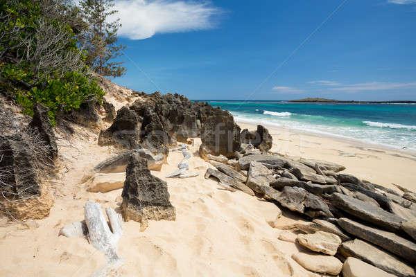 paradise sand beach in Madagascar, Antsiranana, Diego Suarez Stock photo © artush