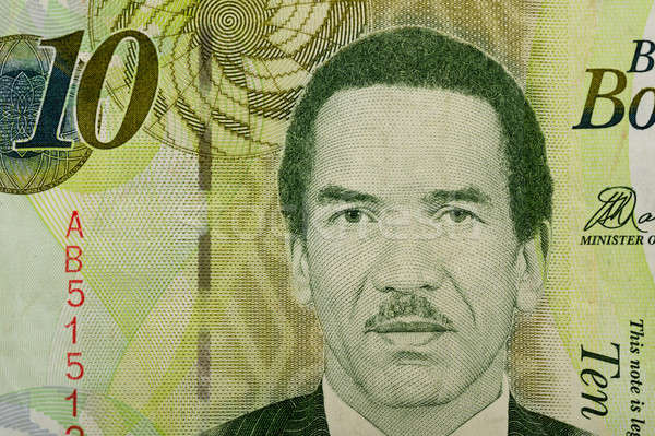 Détail 10 Botswana monnaie design Photo stock © artush
