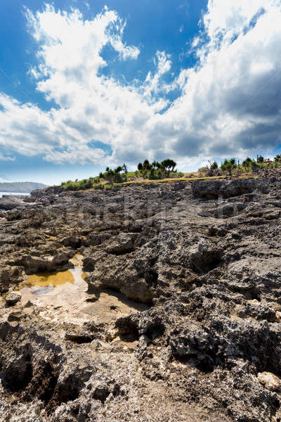 海岸線 島 岩 壊れた ビーチ バリ ストックフォト © artush
