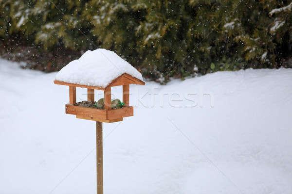 simple bird feeder in winter garden Stock photo © artush