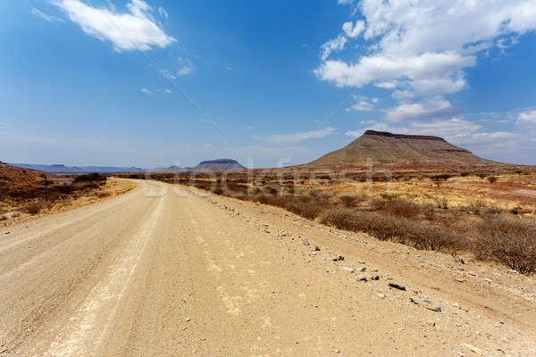 Panorama Namibya manzara bölge mavi gökyüzü doğa Stok fotoğraf © artush