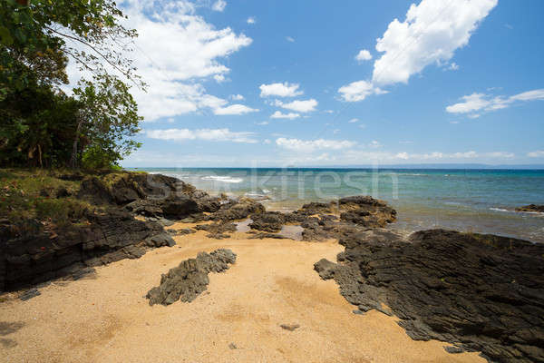Beautiful dream paradise nature beach madagascar Stock photo © artush