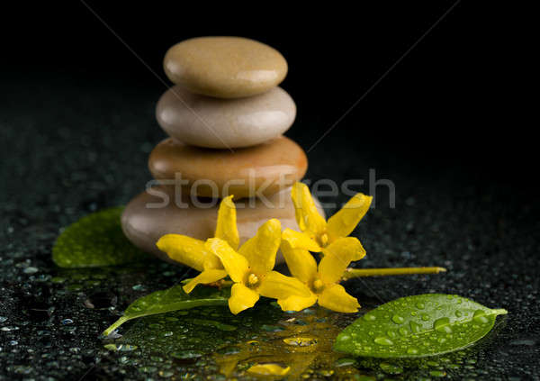 balancing zen stones on black with yellow flower Stock photo © artush