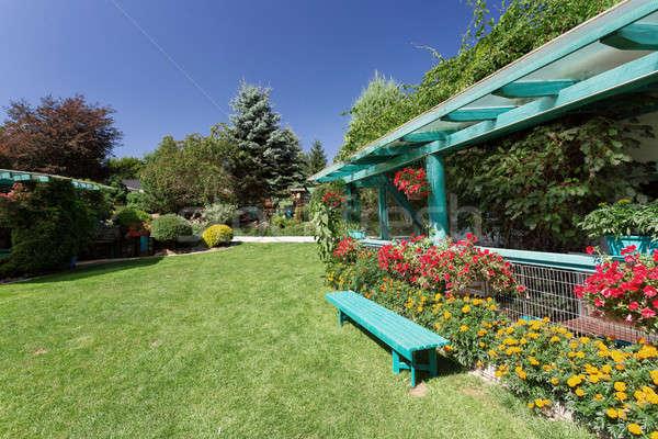Beautiful pergola in garden design Stock photo © artush
