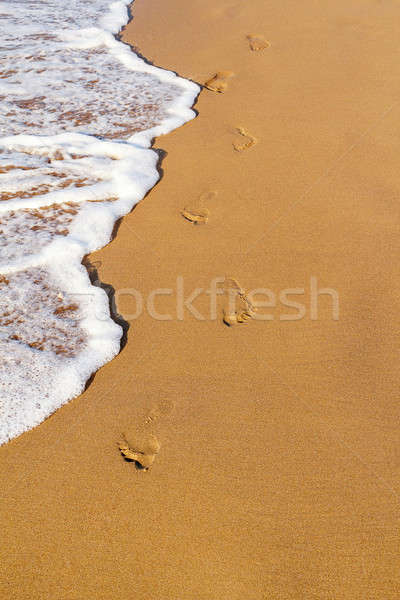 Footsteps on the beach Stock photo © artush