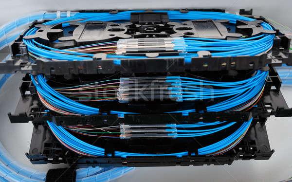 волокно оптический защиту рукав синий Сток-фото © artush