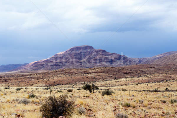 Stock photo: panorama of fantastic Namibia moonscape landscape