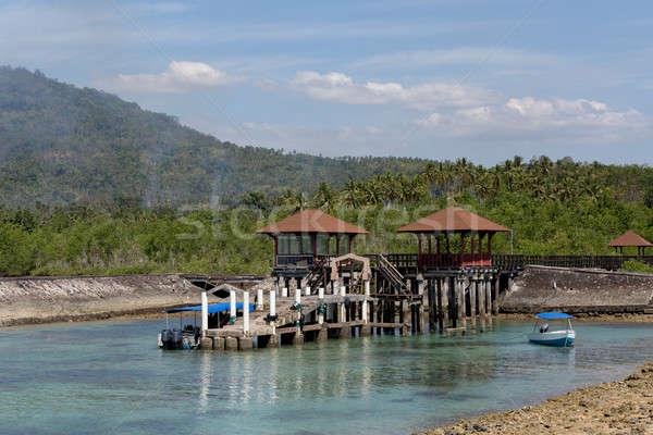 Indonesian landscape with mangrove and view point walkway Stock photo © artush