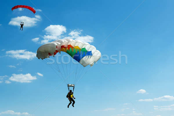 unidentified skydivers on blue sky Stock photo © artush