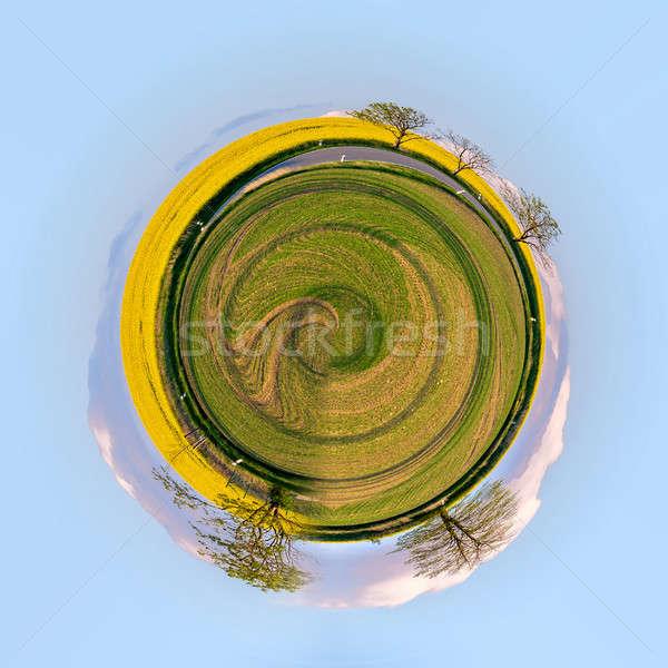 little planet of Beautiful summer rural landscape Stock photo © artush