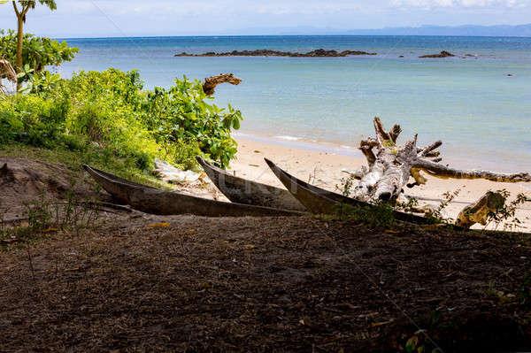 Beautiful dream paradise beach, Madagascar Stock photo © artush