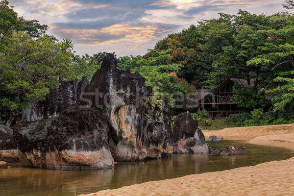 風景 公園 マダガスカル 美しい 処女 自然 ストックフォト © artush