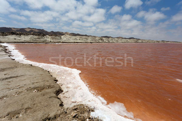 salt mineral mining in Namibia Stock photo © artush