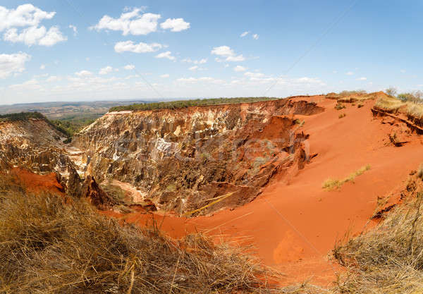 Ankarokaroka canyon in Ankarafantsika, Madagascar Stock photo © artush