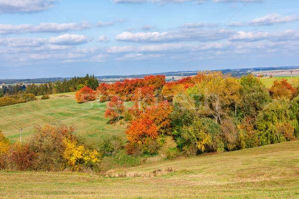 Automne paysage automne arbres ciel bleu Photo stock © artush
