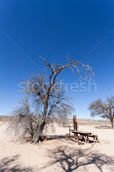 Stock photo: stopover rest place in Kgalagadi transfontier park