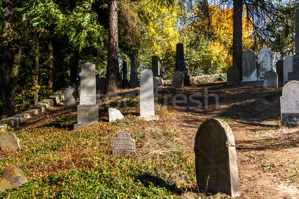 forgotten and unkempt Jewish cemetery with the strangers Stock photo © artush