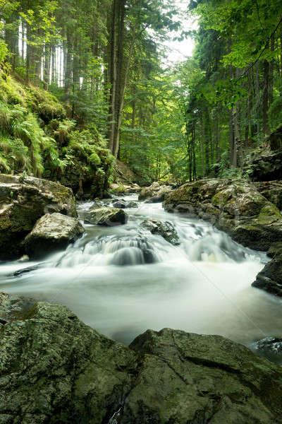 Hegy patak lassú redőny sebesség cseh Stock fotó © artush