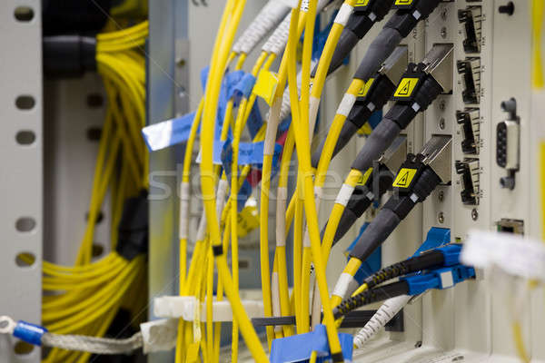 service provider datacenter Stock photo © artush