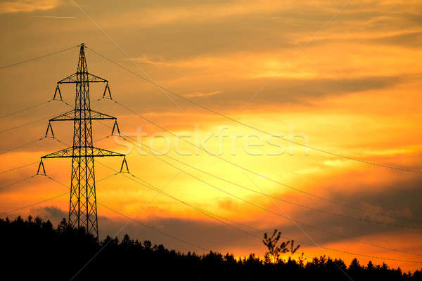 sunset with electricity in countryside Stock photo © artush