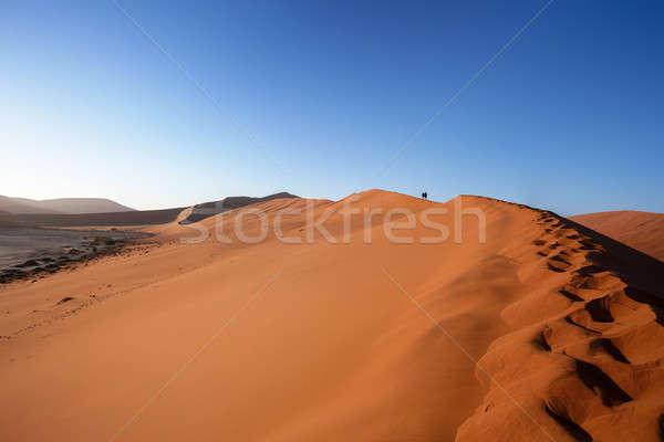 Duna nascosto deserto morti migliore luogo Foto d'archivio © artush