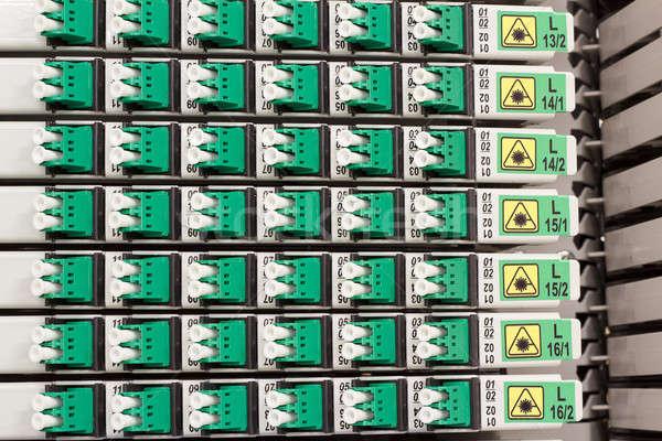 Rost optikai kábel vezetőség zöld kék Stock fotó © artush